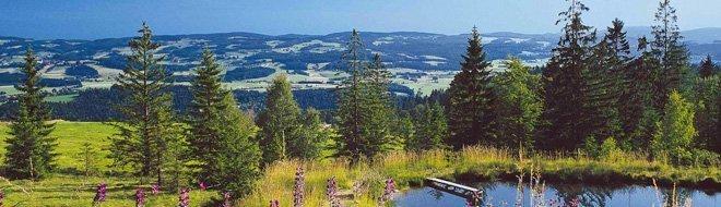 naturpark-bayerischer-wald