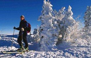 skifahren-bayern