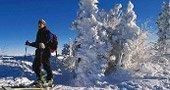 Skiurlaub Bayerischer Wald