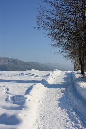 wandern-bayerischewald