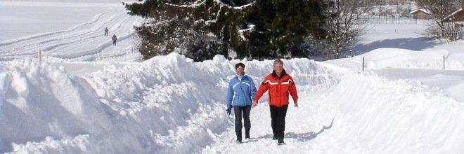 Spaziergang im Schnee in St. Englmar