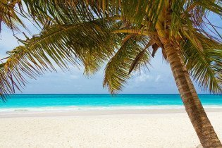 Karibik-Feeling